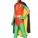 Supply Robin Lycra Shiny Metallic Super Hero Costume