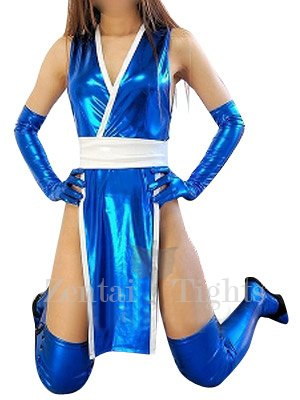 Ideal Blue Shiny Metallic Sexy Costume